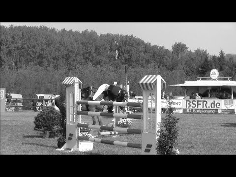 'Yes, I can !'♥||Equestrian