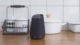 COWIN DiDa | Smart Wireless Bluetooth WIFI Speaker with Alexa