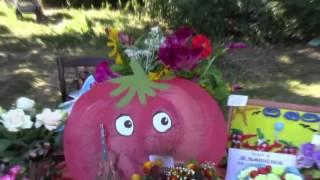 #Областной фестиваль Ахтубинский помидор