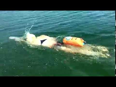 Safer Swimmer Open Water Swim Buoy Kiefer Swim Shop