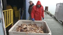 Grant's Getaways:  Winter Crabbing in Oregon