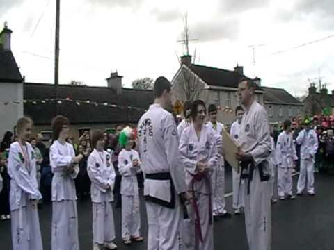 Midlands Taekwon-Do at St. Patricks day parade Clonmellon 17-3-2012 (Video2)