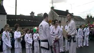 Midlands Taekwon-Do at St. Patricks day parade Clonmellon 17-3-2012 (Video2)