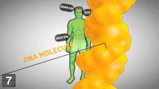 18 фактов о генетике, которые тебе нужно знать!