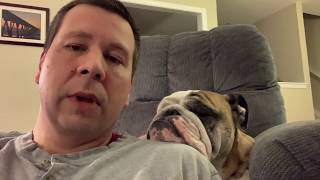 Reuben the Bulldog: Reuben's Channel and COPPA