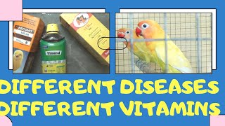 use different multivitamins for different indications/ best multivitamins for birds