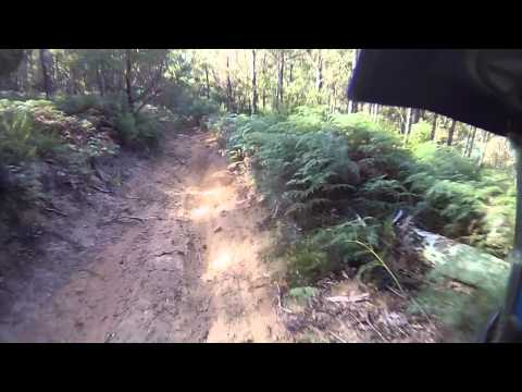 2011 Gasgas EC300, Buckland Tasmania, hillclimb.MOV