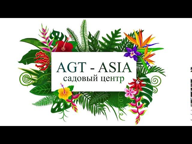 AGT ASIA - самый большой садовый центр в Бишкеке!