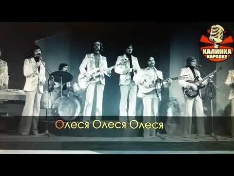 """Песня """"Алеся"""" (Девушка из Полесья) группы """"Сябры"""""""