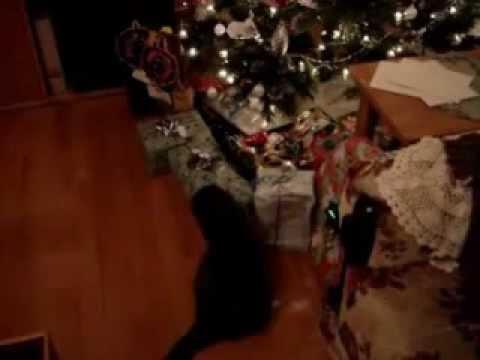 Christmas Time's A Coming
