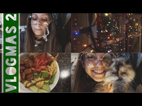 GETTING IN THE HOLIDAY SPIRIT! // Vlogmas Day Two (12.3.17)