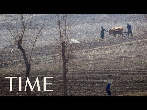 Download Youtube: Worst Drought Since 2001 Hits North Korea's Food Supply, Could Lead To Serious Food Shortages | TIME