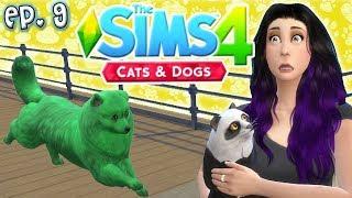 Joel Ran Away?! - The Sims 4: Raising YouTubers PETS - Ep 9 (Cats & Dogs)