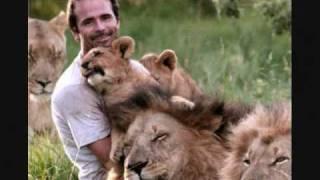 Kevin Richardson (Lion Whisperer) Tribute