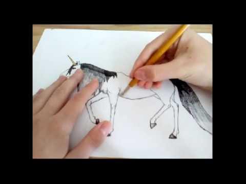 Kresleni Jednorozce Youtube
