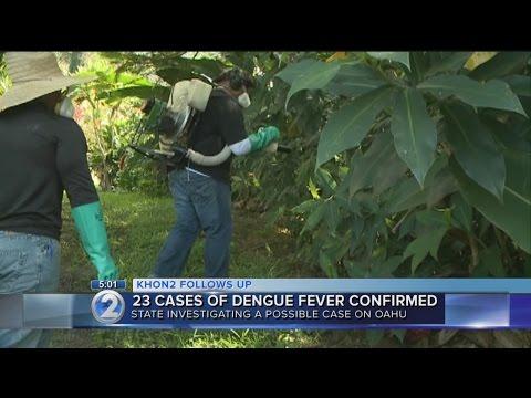 Vector control teams spray for mosquitoes on Hawaii Island