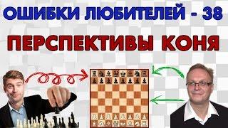 Обучение шахматам. Перспективы коня. Ошибки любителей - 38. Игорь Немцев