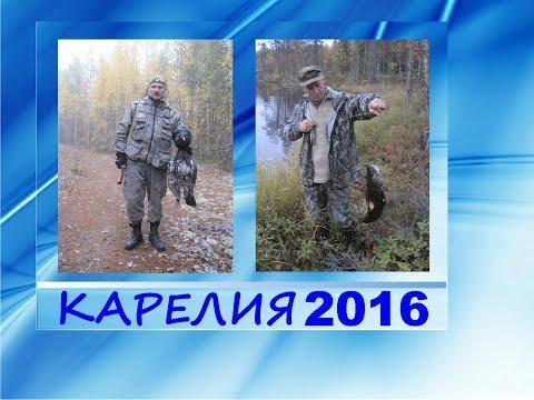 Рыбалка в Карелии. Кемь. Рыбалка, охота, 2016.Часть 8. Окуня длиной в лавочку лодки