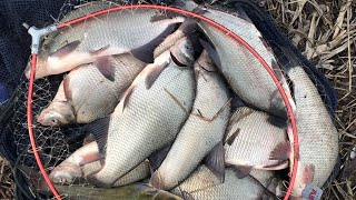 Весенняя рыбалка на фидер Попал на КЛЁВ ЛЕЩА