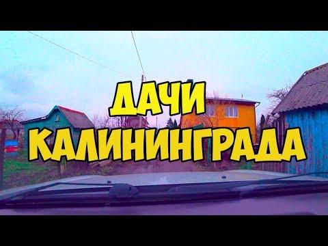 Дачи Калининграда, СНТ около окружной в районе поселка Чкаловск. Калининградская обл. Декабрь 2018