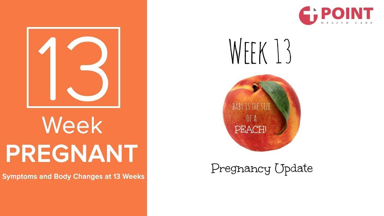 13 Weeks Pregnant Symptoms   13 Weeks Pregnant Baby Size   Pregnancy Tips  Week By Week