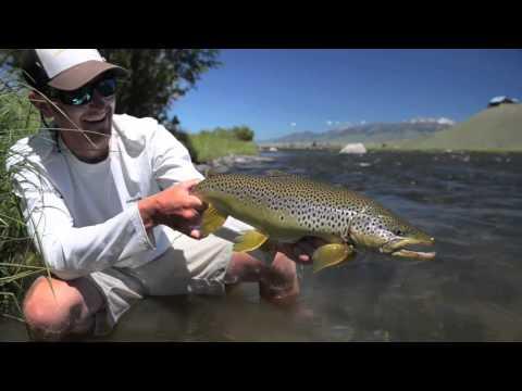 2013 Fish REEL - fly fishing Montana