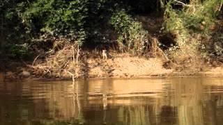 Barra do Rio claro 3 GOIAS 2013