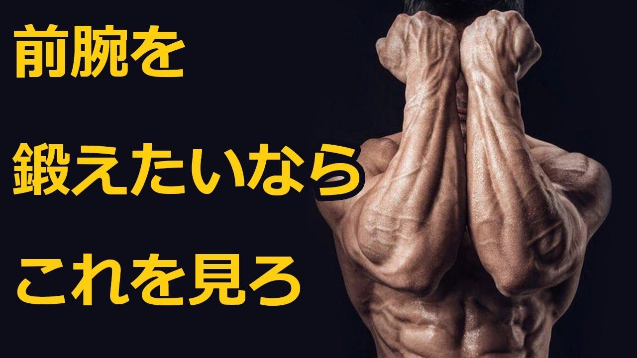 【科学的】最も目立つ前腕の鍛え方