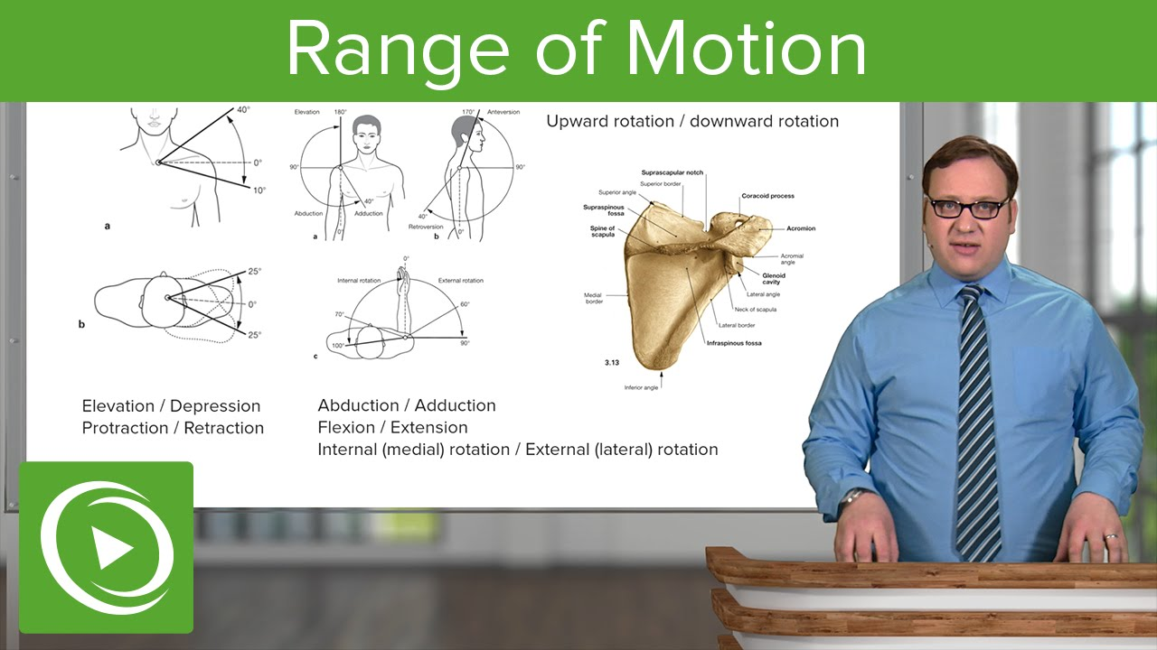 Upper Limb: Range of Motion – Anatomy | Lecturio