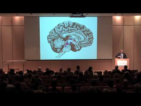Mark Solms, PhD:  The Animal Within Us
