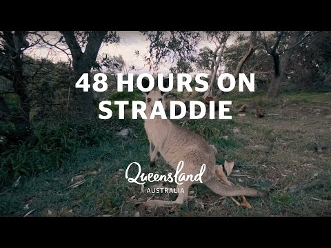 48 Hours On North Stradbroke Island, Brisbane Region