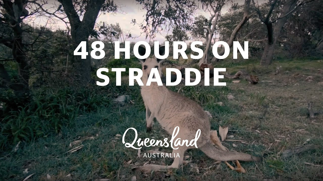 Connecting You To North Stradbroke Island: 48 Hours On North Stradbroke Island, Brisbane Region