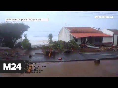 """""""Погода"""": москвичей предупредили о сильном ветре - Москва 24"""