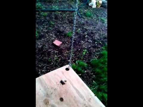 Backyard hanging treehouse