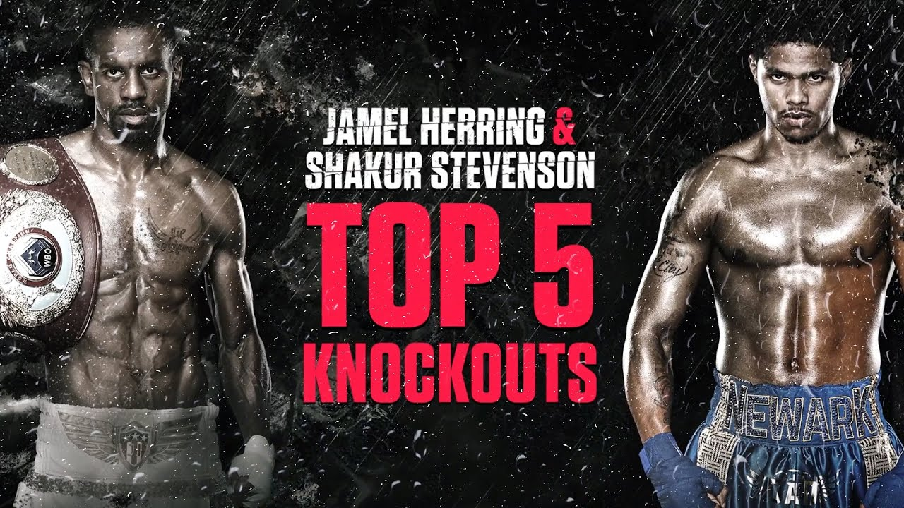 Jamel Herring and Shakur Stevenson's Top 5 Knockouts