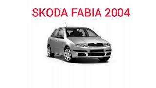 Skoda Fabia 2004.  Шкода Фабія 2004.  Обзор ЛКП автомобіля за допомогою товщиноміра.