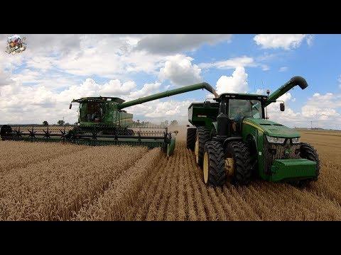 Wheat Harvest 2019 near Baldwin Illinois