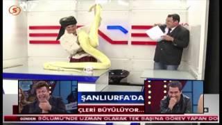 Fatih Ürek ve yılan tutma korkusu