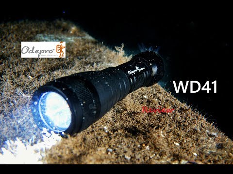 BEST Back-up For TEC Diving?  REVIEW | Odepro WD41