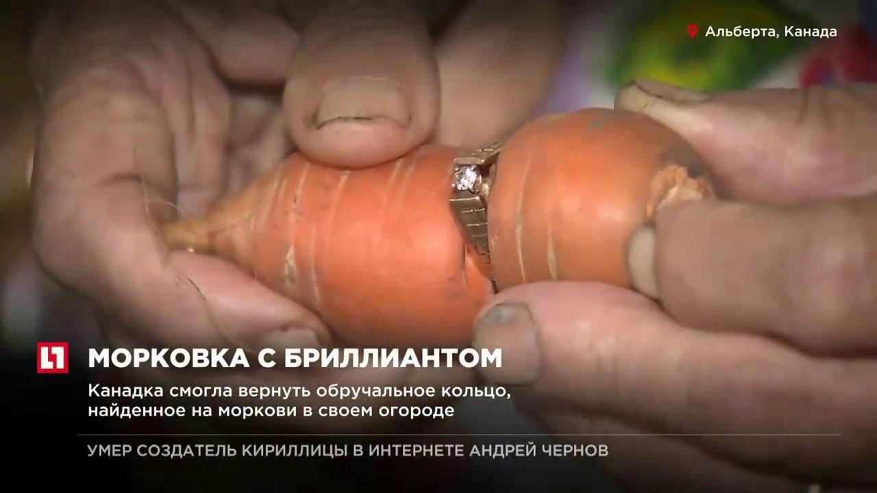 Смотреть Тайное послание от советского Нострадамуса Николая Носова видео