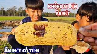 Thách Ai Ăn Hết Tổ Ong Mật Này Nhận 200k | challenge to eat honey