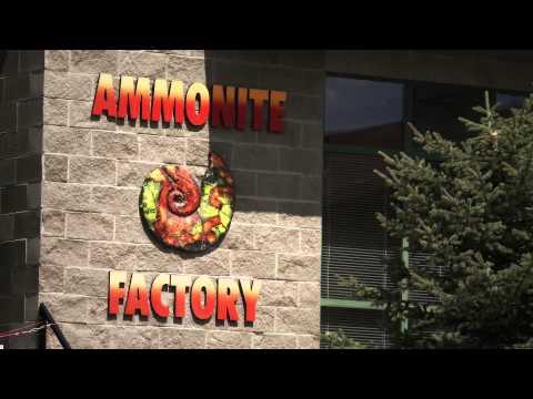 Ammonite Factory - Canmore, Alberta - CANADA - Ammolite History, Mining, Miner, Producer - RARE GEM