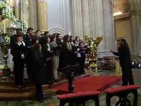 gupo coral de Airão S.João no Sameiro 3ª musica 19 Maio 2013