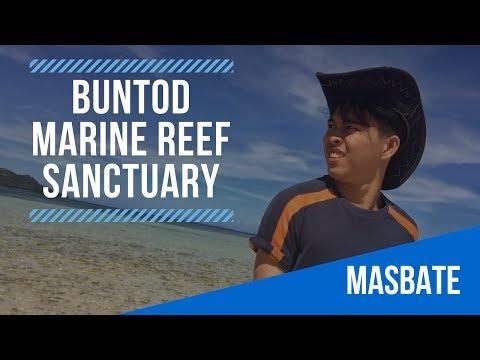 Buntod Reef Marine Sanctuary | Masbate