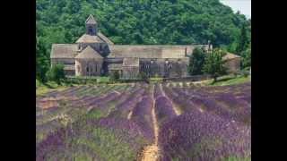 MAP Move Around Provence : voyage en Provence à la carte.mp4