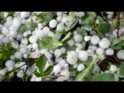 Град уничтожает урожай в Армении. Погода в СНГ