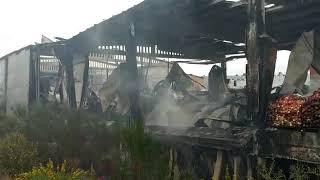 Así quedó la nave de Frutas Mavaz tras el incendio