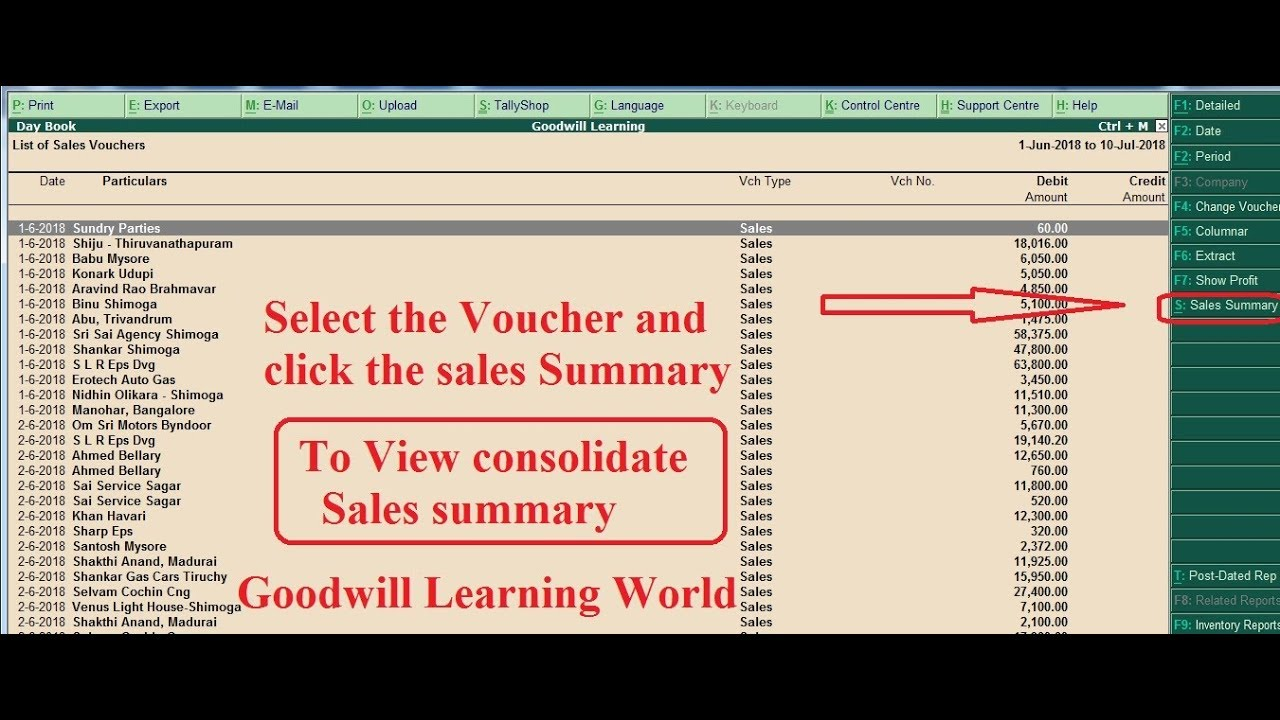Tally TDL for Consolidated Sales Summary for selected voucher - view party  and day sales summary