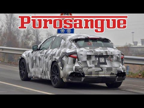 FERRARI PUROSANGUE TEST CAR ON THE ROAD
