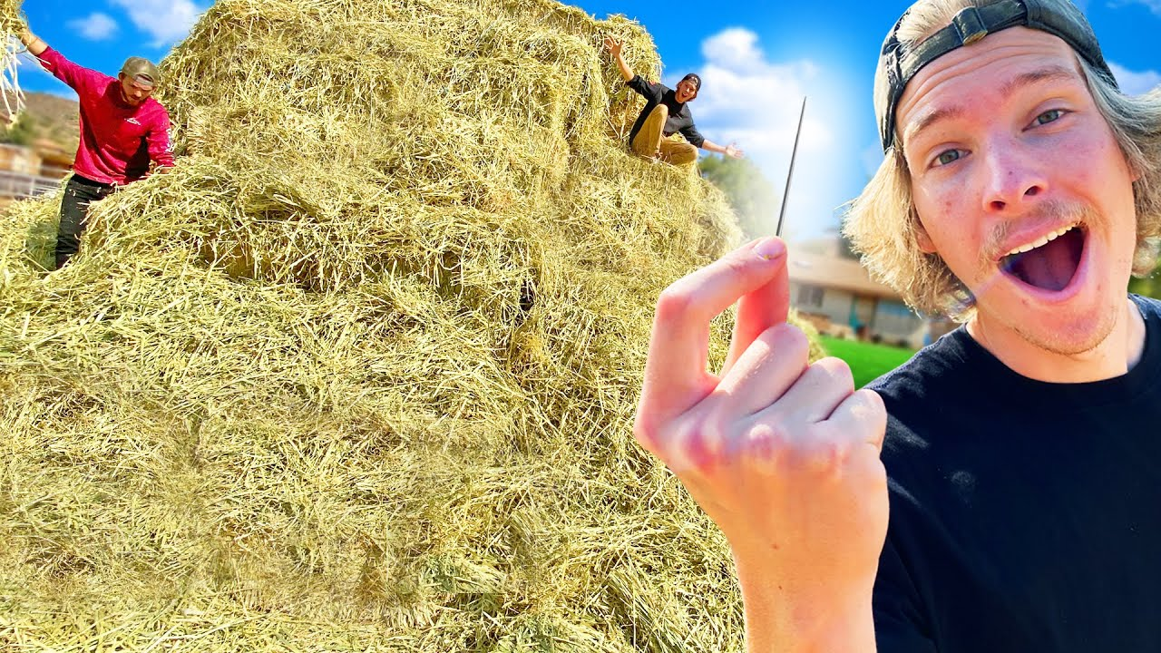 First to Find Needle in Haystack Wins $10,000!